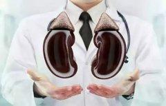 关于高血压肾病,你了解多少?