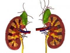 控制慢性肾炎病情发展,这3项并发症必须知道!